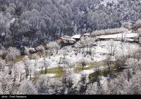 آغاز بهکار کمیته سوخت زمستانی در شرکت ملی گاز ایران